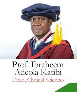 Dean-Professor Ibraheem Adeola Katibi